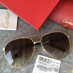 2017 New Cartier Vintage Sunglasses AAA Copy - Men Gift (7)