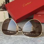 2017 New Cartier Vintage Sunglasses AAA Copy - Men Gift (8)