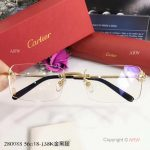 2017 New Knockoff Cartier Sunglasses stainless steel Frame - Fashion Cartier Sunglasses (2)