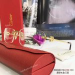 2017 New Knockoff Cartier Sunglasses stainless steel Frame - Fashion Cartier Sunglasses (4)
