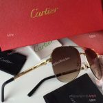 2017 Replica Cartier Sunglasses - Exact Replica (3)